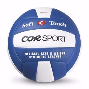 Immagine per la categoria Palloni volley
