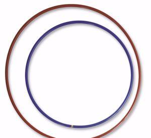 Immagine per la categoria Cerchi ritmica